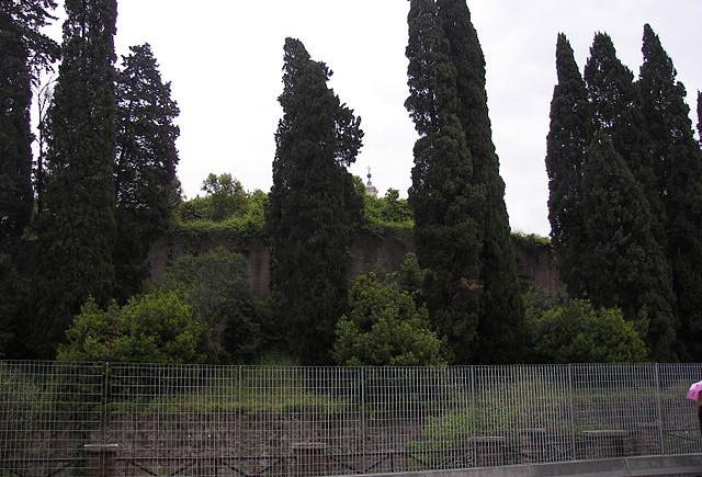 LivItaly Tour Rome